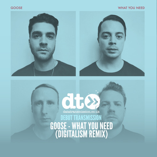 Goose - What You Need (Digitalism Remix)