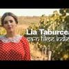 Lia Taburcean - Ca-n filme indiene (Prod. by Kapushon) (Official Audio)