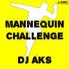 DJ AKS - Mannequin Challenge