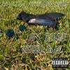 Lil Altima x Hypebeast Kreeg - In The Fields (prod. CROUCHGOD)