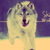 David Guetta feat S1a e A.D.  - She Wolf ( Ander Sant Mashup Pvt )