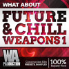 Future & Chill Weapons 1 [500+ Flume / The Chainsmokers Style Drums, Presets & Kits]