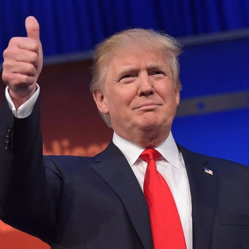 6. Donald Trump from a European point of view