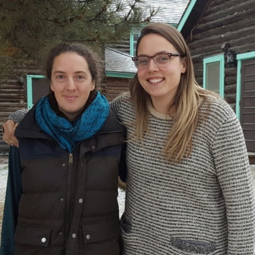 Update on Kluane lynx study in the Yukon
