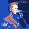 Gazebo-Lunatic
