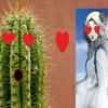 Daisy's True Love 【A/E Test】