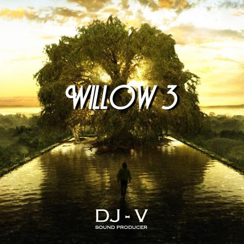 Willow 3 - DjV