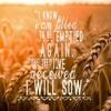 TSYG: The Desert, The Battle, The Harvest - Part 3 (the Harvest)[Fr Feltaous]
