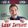 INTENS 35: Filosoferen over geluk & succes met Bart van den Belt