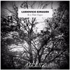Ludovico Einaudi - Time Lapse (AIRLNZ Flip)