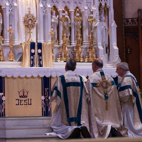 2016-11-13 Homily of Fr. Perrone (EF Closing of 40 Hours - Noon)