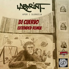Labyrint  - Apor i Djungeln (Cuervo Extended Remix)