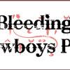 Bleed'N Cowboys Wedding Band Northern Ireland Performing Human By The Killers