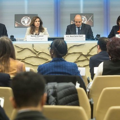 International Year of Pulses - Global Dialogue: Opening session - Perm Rep Turkey