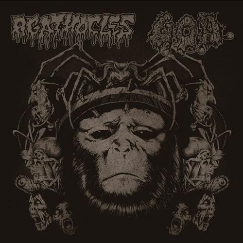 AGATHOCLES/ G.O.D. split CD