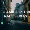 Meu Amigo Pedro  - Raul Seixas  - Nill Lima Portada del disco