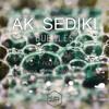 AK Sediki & Mauvaise Pioche - Lesson