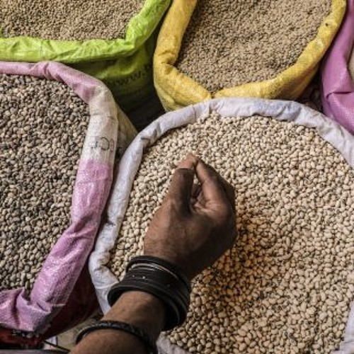 International Year of Pulses - Global Dialogue: Closing session