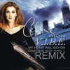 Celine Dion – My Heart Will Go On (V.I.B.E. FT. Vitaliy Killon REMIX) mp3