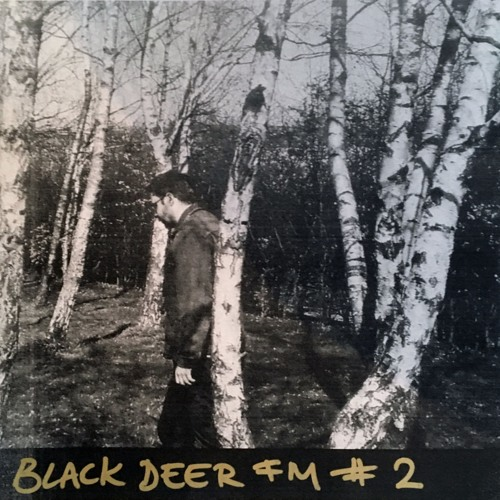 Black Deer FM #2 - Romantic Rhine River Valley