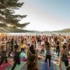Desert Dwellers - Gratitude Yoga Flow