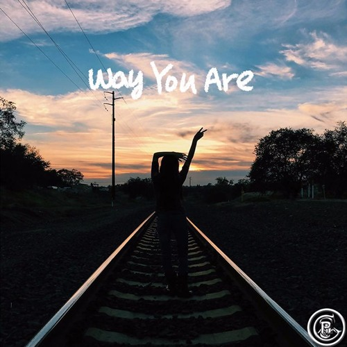 Way You Are (Pilgrims Flip)