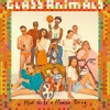 Glass Animals- Youth
