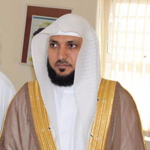 الجزء الرابع عشر - المصحف المرتل - الشيخ ماهر المعيقلي