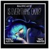 Baircave-Is Everything Okay (Prince Austin Remix)