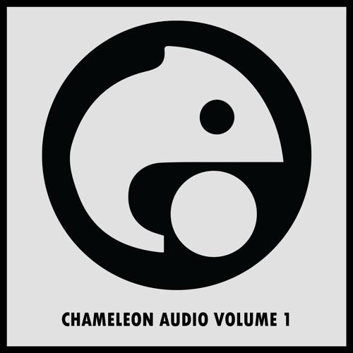 VA - Chameleon Audio Volume 1 (Out now via Juno, Itunes, Amazon, Spotify, etc)