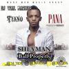 Tekno - Pana (DJ Wal MashUp)| IG: @DJWal mp3