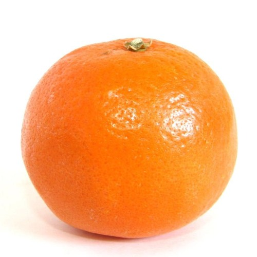 Mandarine Song