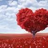 Shiga Lin - 連詩雅 - Still Loving You (Cover By Rit@)