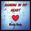 RAINING IN MY HEART.  Buddy Holly  (cover version)