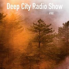 Deep City Radio Show #102 - Part 1 - Andizzzii