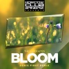 The Paper Kites – Bloom (Denis First Remix)