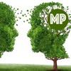 Mesen Productions Company Call - November 27th mp3