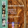 J.S. Bach - Rov Canto Di Lode Augustijnenkerk Dordrecht Juni 2016 Psalm 117 Lobet Den Herrn