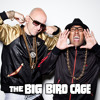 FREE DOWNLOAD: Redhead Kingpin & The FBI - Do The Right Thing (The Big Bird Cage Remix)