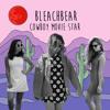 """5. """"Flash Mob"""" by Bleachbear (Cowboy Movie Star album)"""