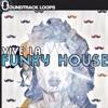 Vive La House Loops and Samples
