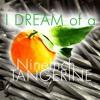 I Dream Of A Nine Inch Tangerine