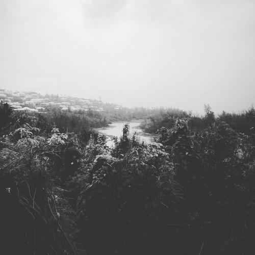 muloka - [004] - november 2016 - spittal pond