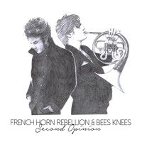 French Horn Rebellion - Second Opinions (Bee's Knees Remix)