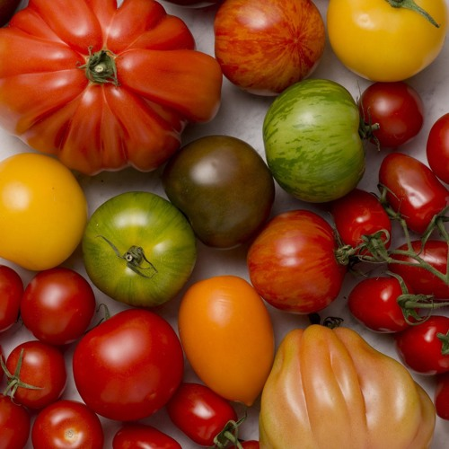 Why Distinguish Between Fruits and Vegetables?