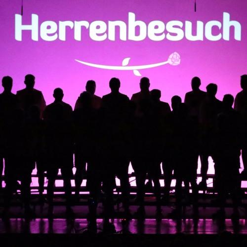 Herrenbesuch Demo-Tracks