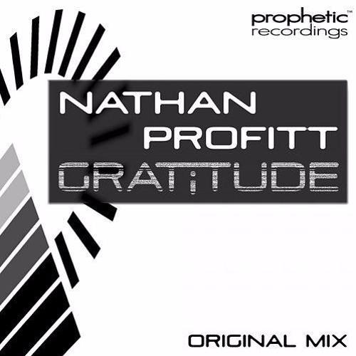 Gratitude (original mix)