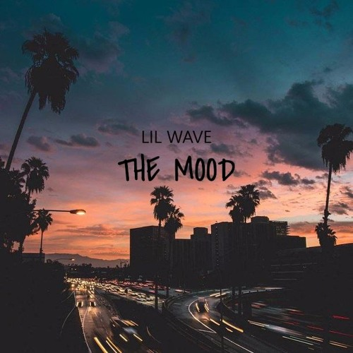 LilWaveBM - The Mood