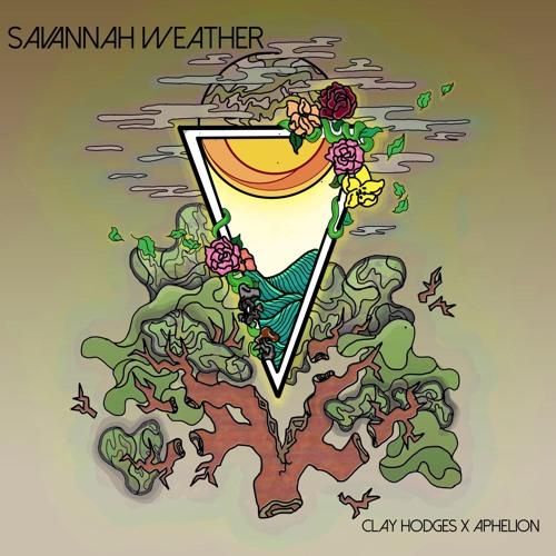 Clay Hodges - Savannah Weather
