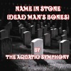 Name In Stone (Dead Man's Bones)